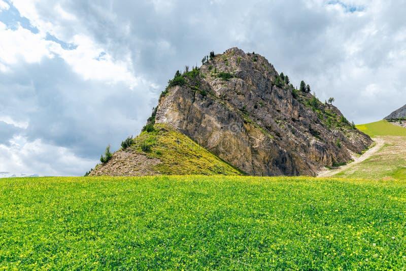 Alpine meadow with mountain top near Piz Boe  mountain in the Italian Dolomites. royalty free stock photos