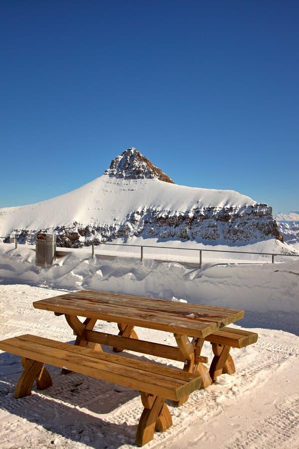 Download Alpine Picnic stock photo. Image of mountains, skies - 13417340