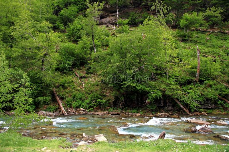 Alpine river in Ordesa National Park in Aragon, Spain. royalty free stock images