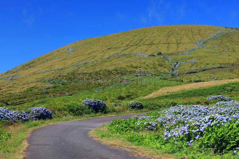 Alpine road on Flores Island in a sunny day royalty free stock photo