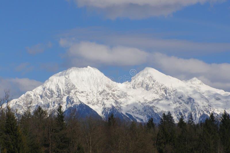 Download Alpine scenery stock photo. Image of seasonal, beautiful - 15503962