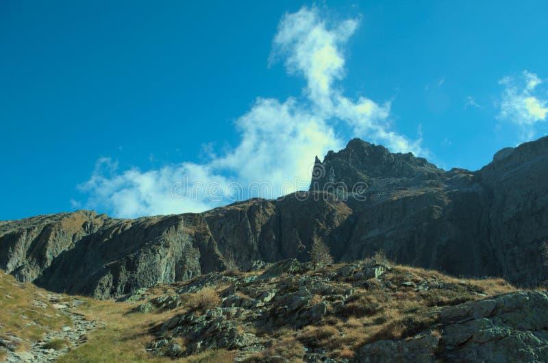 Download Alpine Spitze stockfoto. Bild von freiheit, schön, hoch - 47101252