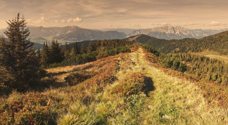 Alpine Szene lizenzfreies stockfoto