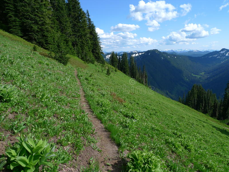 Download Alpine Trail Royalty Free Stock Images - Image: 16710419