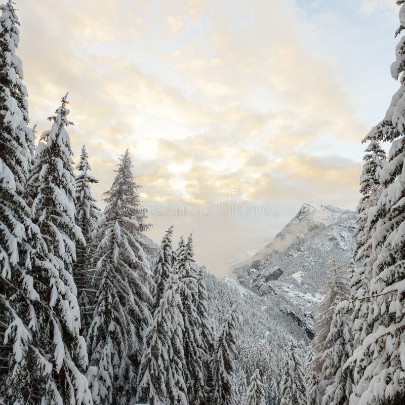 Alpine valley with snow stock photos