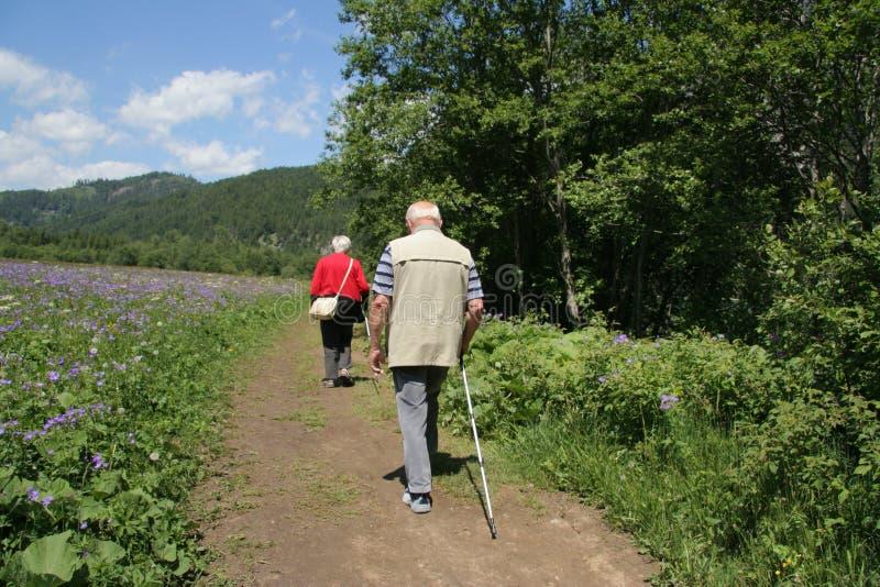 Alpine walkers stock photo