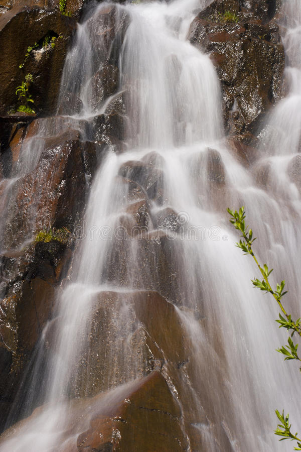 Download Alpine Waterfall Details stock image. Image of green - 20632963