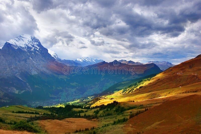 Alpine Wiese des Herbstes lizenzfreie stockbilder