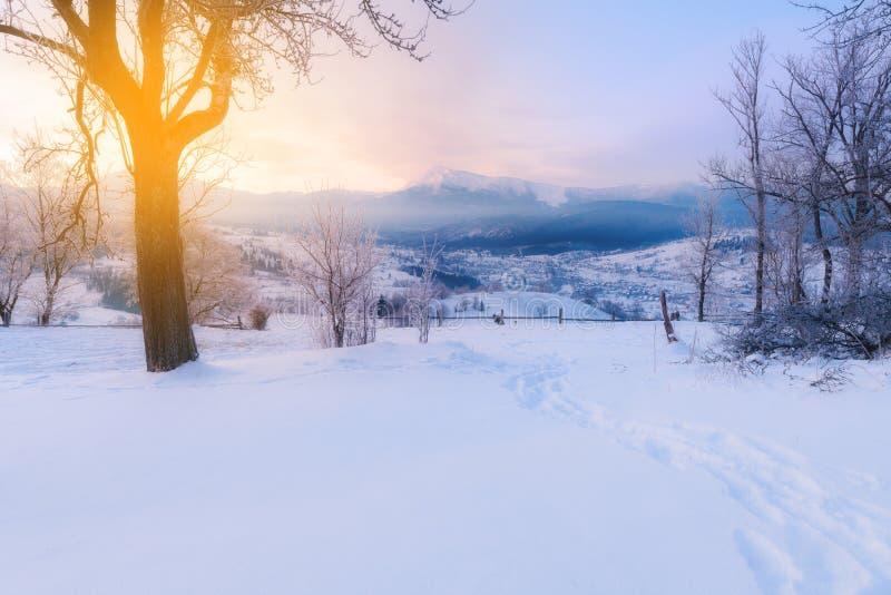 Alpiner Berg des Winters stockfoto