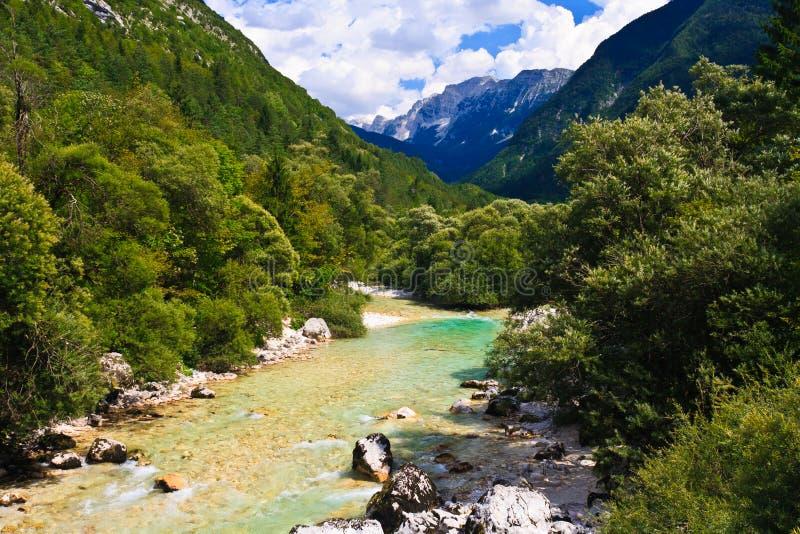Alpiner Fluss, Slowenien stockfotografie