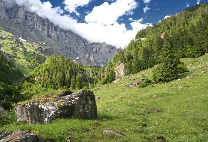 Alpiner Frühling lizenzfreies stockbild