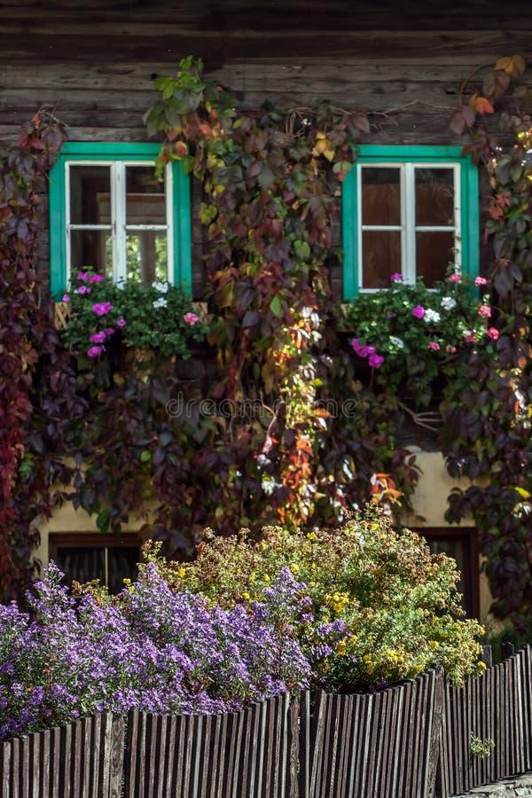 Alpines Fenster des Häuschens zwei lizenzfreie stockfotografie