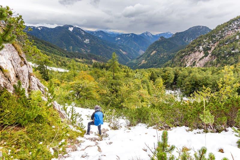 Alpinista do mochileiro que olha a floresta coberto de neve das montanhas imagem de stock