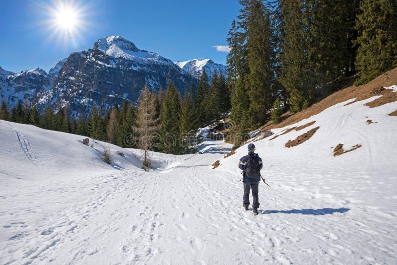 Alpinista wycieczkuje ślad przy zimą, Tirolean krajobrazowy Austria fotografia stock