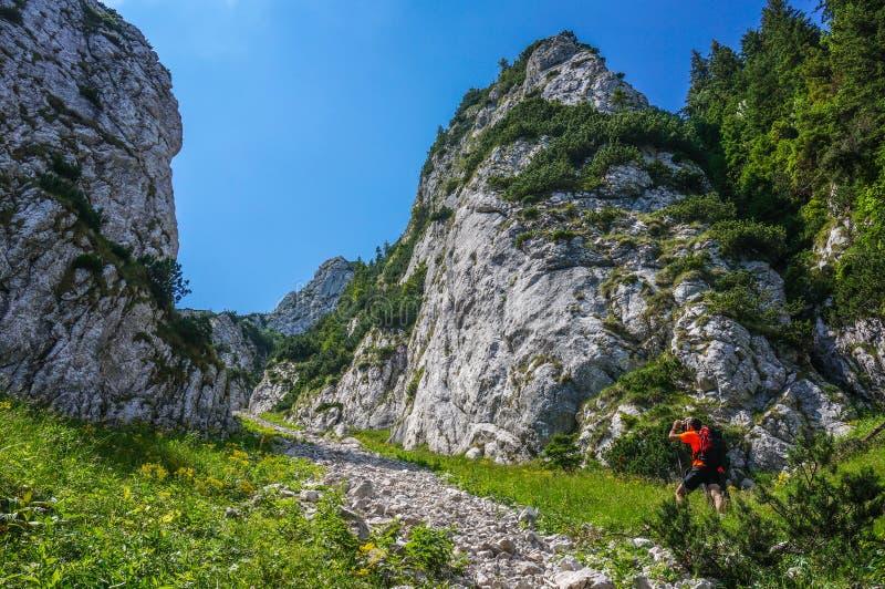 Alpiniste prenant la photo dans les montagnes photo libre de droits