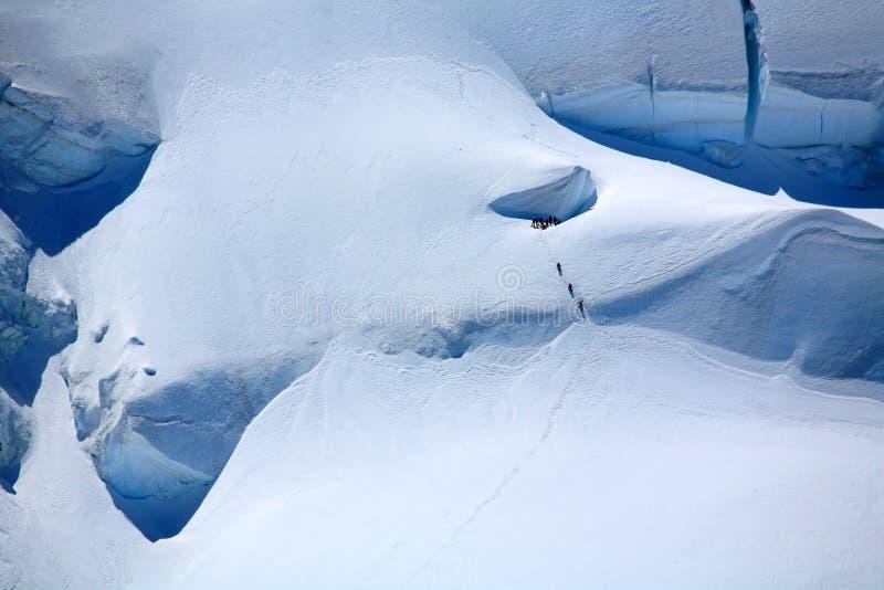 Alpinisten auf einem Gletscher stockbilder