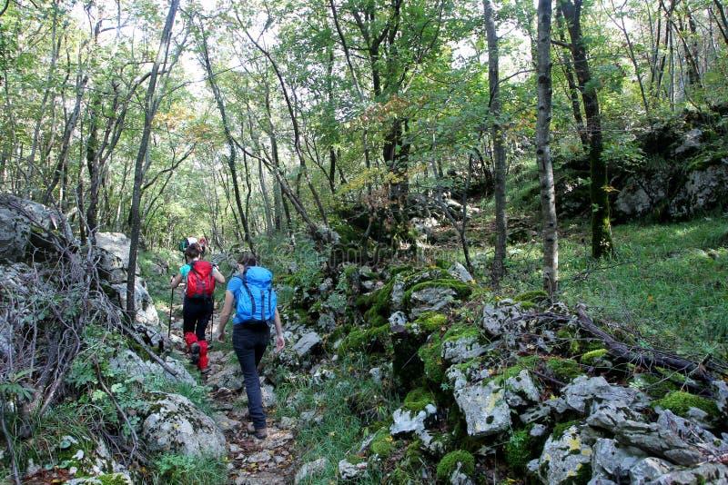 Alpinistes sur Grobnicke Alpe photographie stock libre de droits