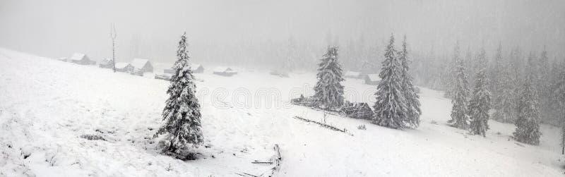 Alpino è il clima immagini stock libere da diritti