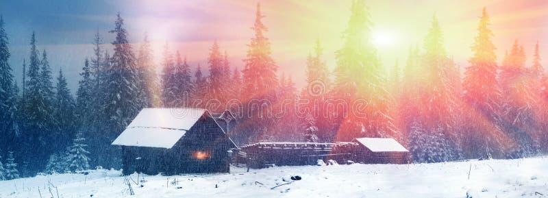 Alpino è il clima fotografie stock libere da diritti