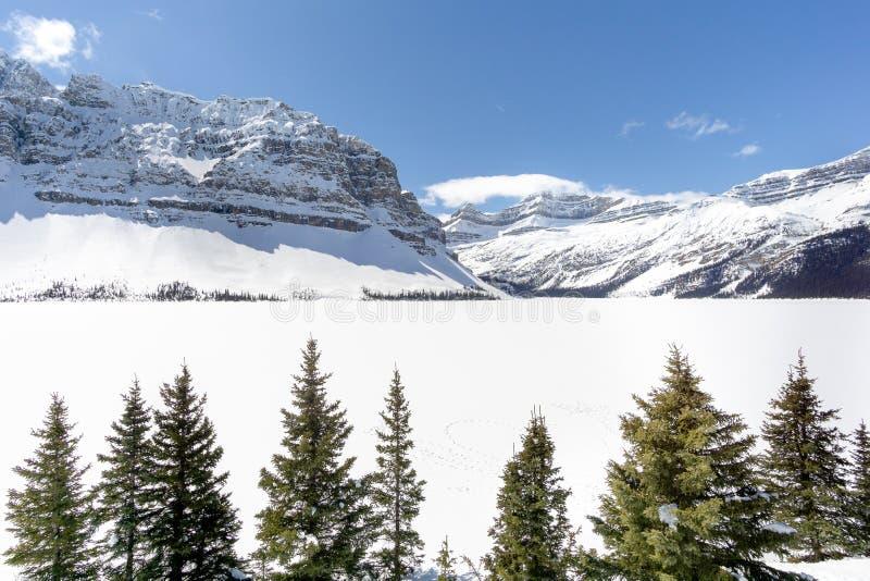 Alpint berg över djupfryst sjö 02 royaltyfri foto