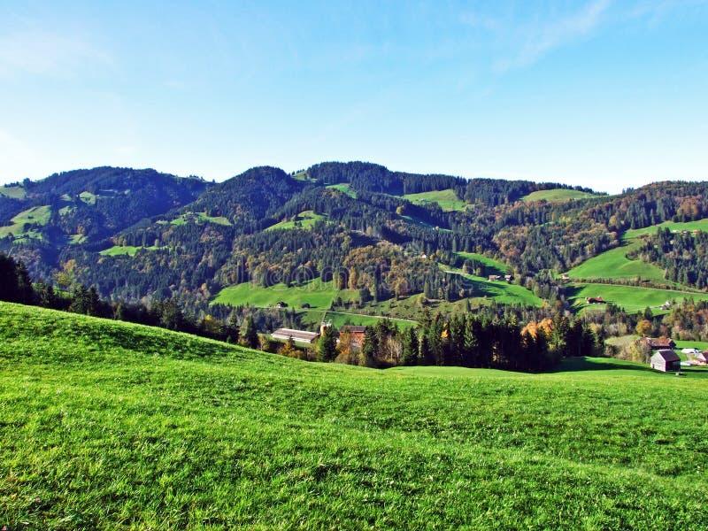 Alpint betar och ängar i den Apenzellerland regionen och på lutningarna av den Alpstein bergskedjan royaltyfri foto