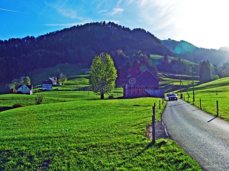 Alpint betar och ängar i den Apenzellerland regionen och på lutningarna av den Alpstein bergskedjan arkivfoto