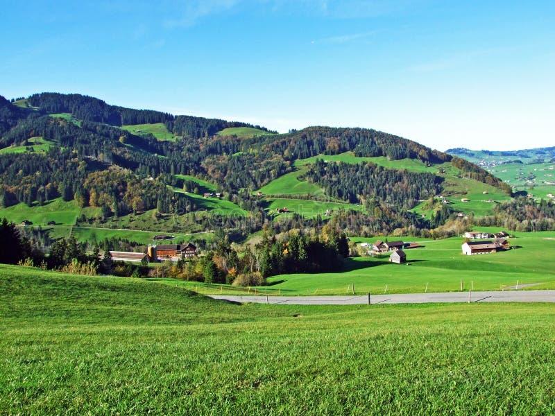Alpint betar och ängar i den Apenzellerland regionen och på lutningarna av den Alpstein bergskedjan arkivbild