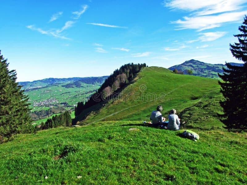 Alpint betar och ängar i den Apenzellerland regionen och på lutningarna av den Alpstein bergskedjan royaltyfria bilder