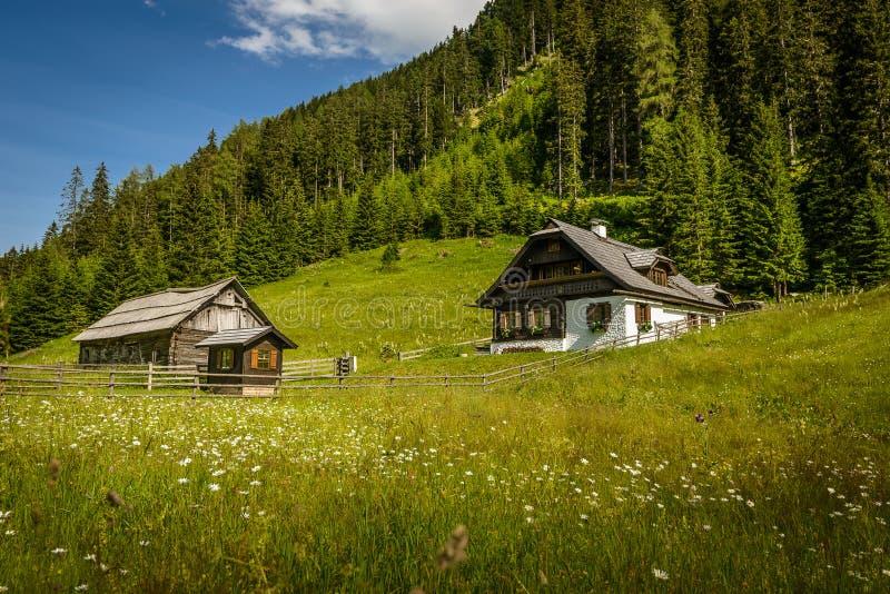 Alpint hus arkivfoto