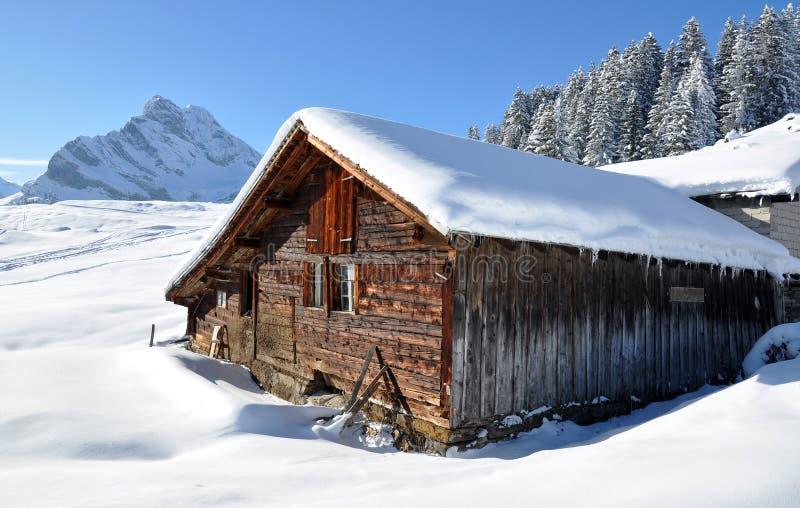 alpint landskap arkivfoto