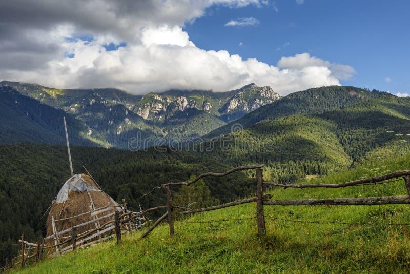 Alpint landskap för sommar med gräsplanfält och höstackar, kli royaltyfri bild