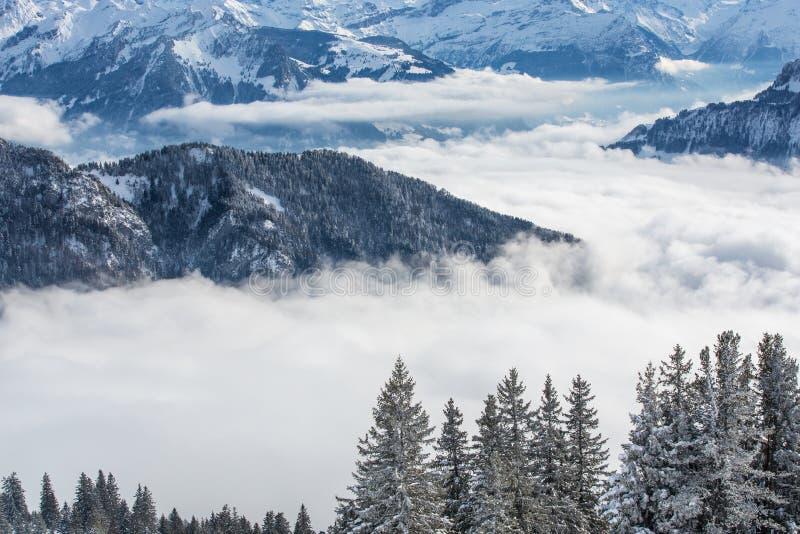 Alpint landskap för storartad vinter med höga berg royaltyfria foton