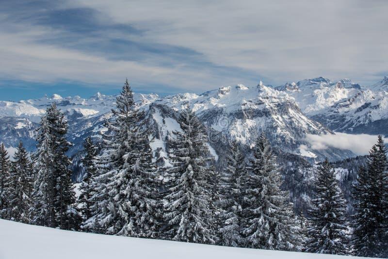 Alpint landskap för storartad vinter med höga berg royaltyfri fotografi