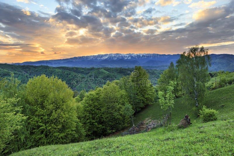 Alpint landskap för vår med gräsplanfält och höga snöig berg, kli, Transylvania royaltyfri foto