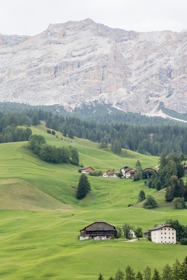 Alpint landskap med gröna ängar royaltyfri bild