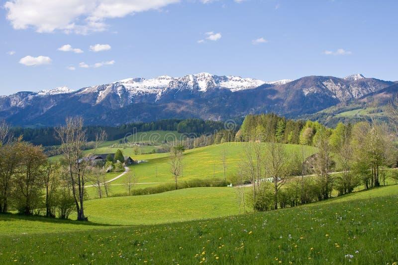 alpint lantgårdland royaltyfri bild