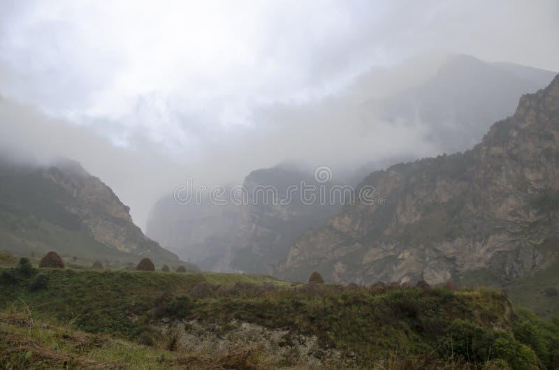 Alpint regn royaltyfria bilder
