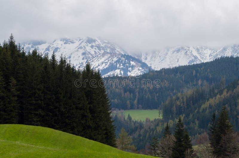 Alpint vårlandskap royaltyfri fotografi
