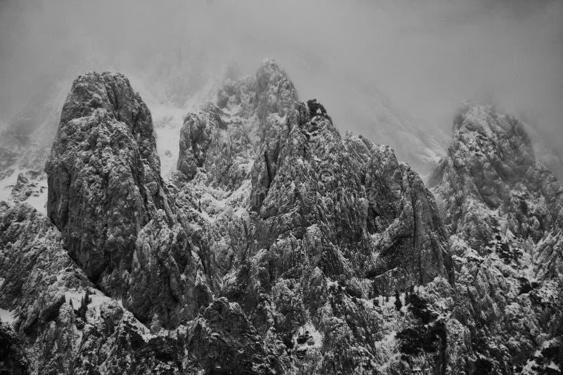 Alpint vinterlandskap i Transylvanian fjällängar royaltyfria bilder