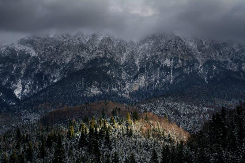 Alpint vinterlandskap i Transylvanian fjällängar arkivfoton