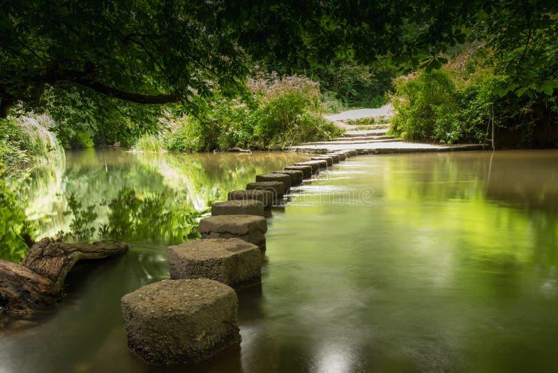 Alpondras Boxhill, Surrey, Inglaterra g imagens de stock