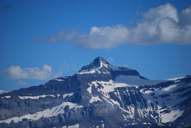 alps швейцарские стоковая фотография rf
