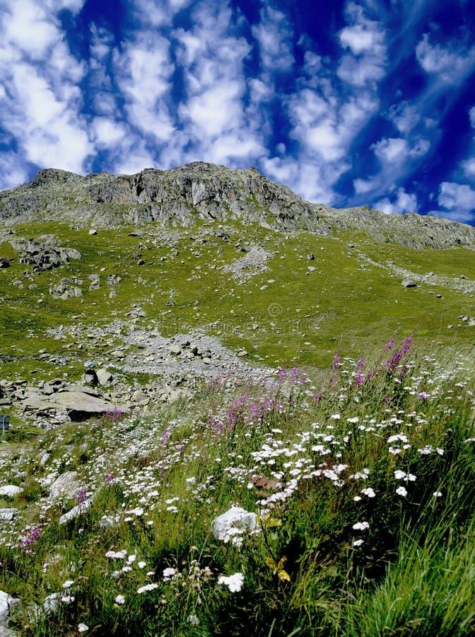 Download Alps stock image. Image of travel, wild, scenery, cols - 6030143