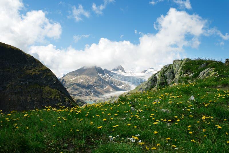 alps стоковое фото