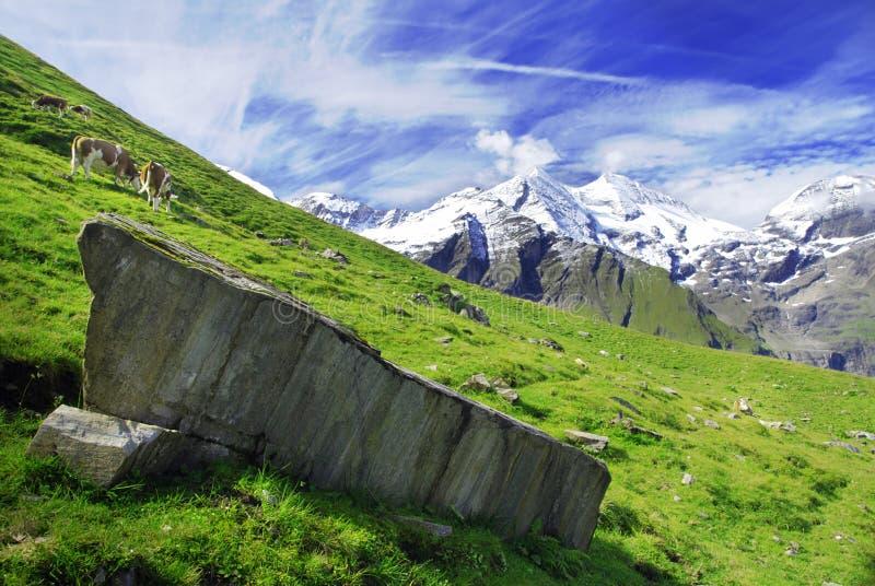 alps arkivfoto
