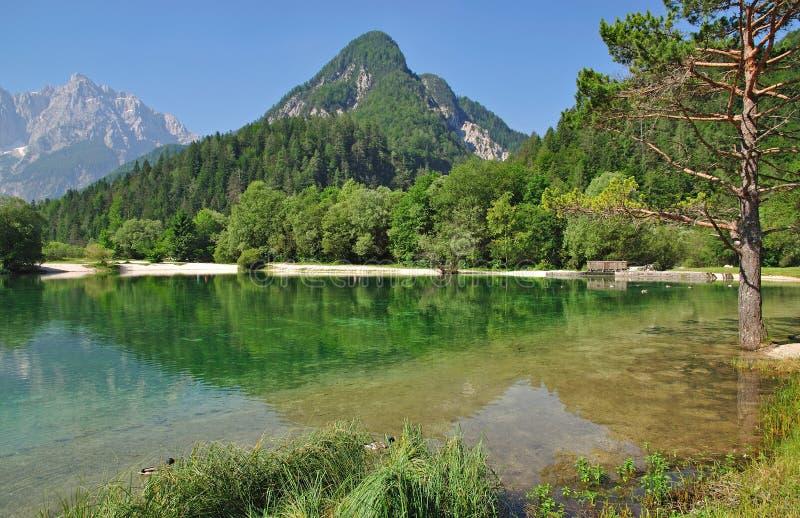 alps gora jasna jezioro kranjska jezioro Slovenia zdjęcia stock