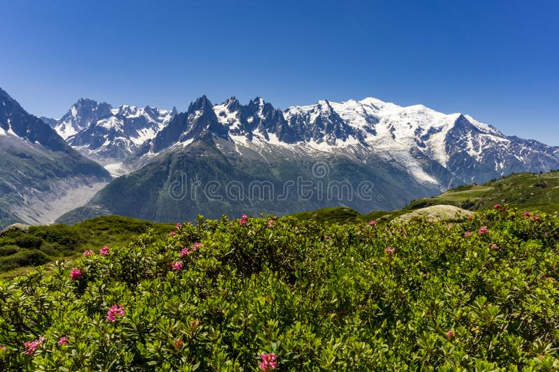 Alps in June. View of the Mont Blanc massif stock photo