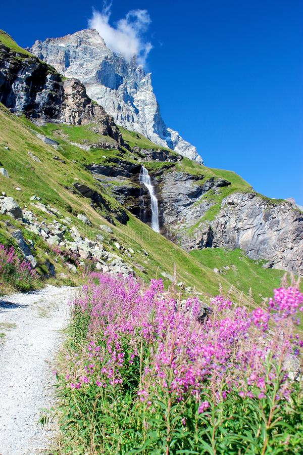 Download Alps Landscape: Mountains, Flowers, Waterfall And A Clear Blue Sky Stock Image - Image: 33434927