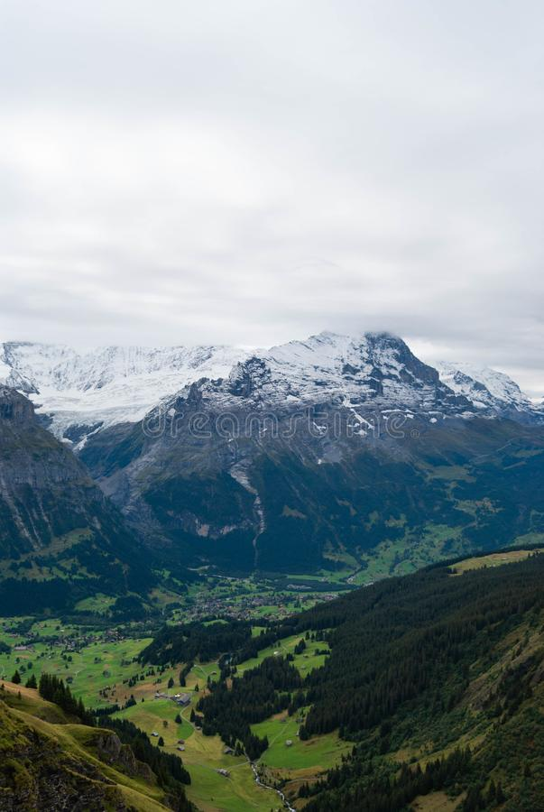 Alps landscape in the summer. Beautiful view of Swiss Alps peaks snow nature europe beauty tourism high mountain cold jungfrau sharpen rock extremely background royalty free stock photography