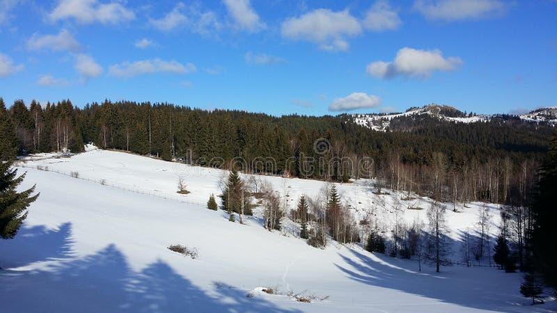 alps räknade trän för vintern för schweizare för snow för husplatsen lilla royaltyfri bild